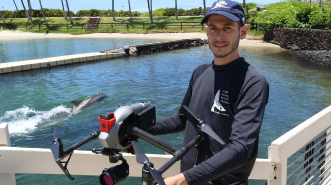 Dolphin reproductive research aided by drones from the University of Hawai'i