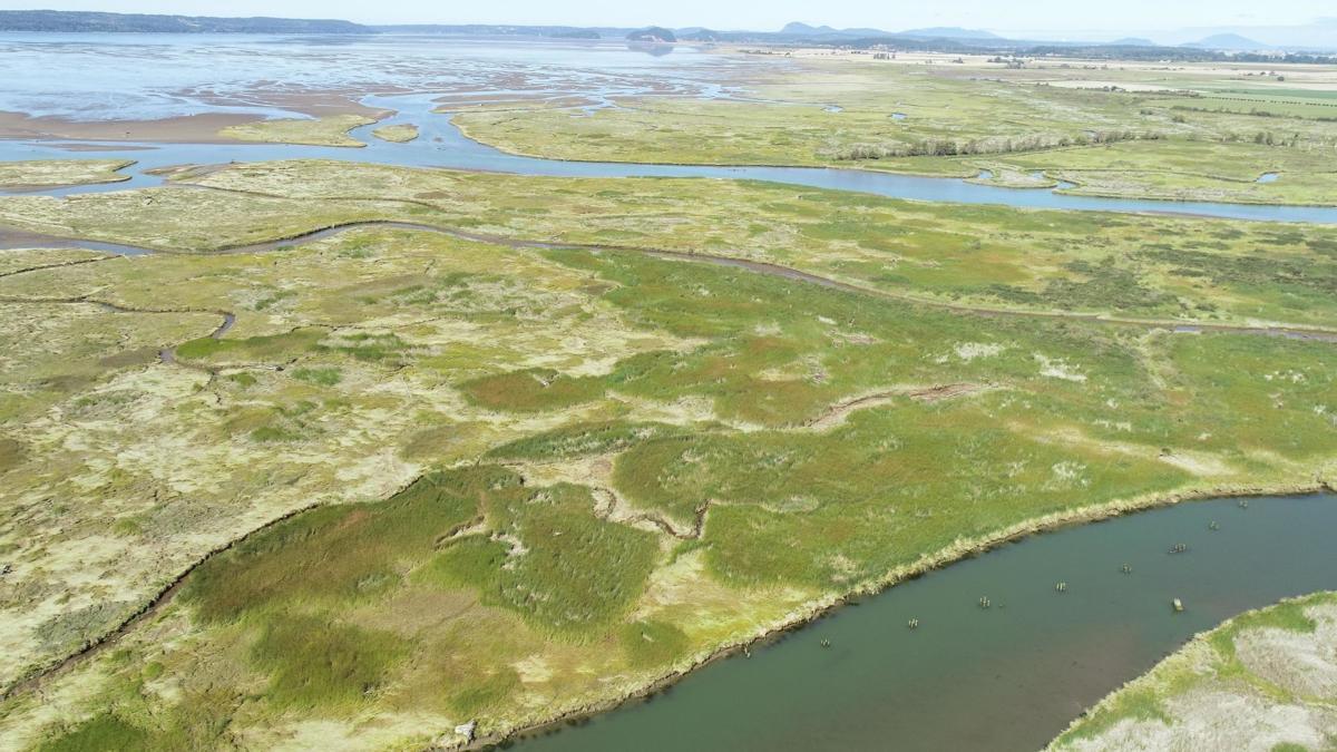 U.S. Fish & Wildlife uses a drone to monitor Skagit Wildlife Area habitat
