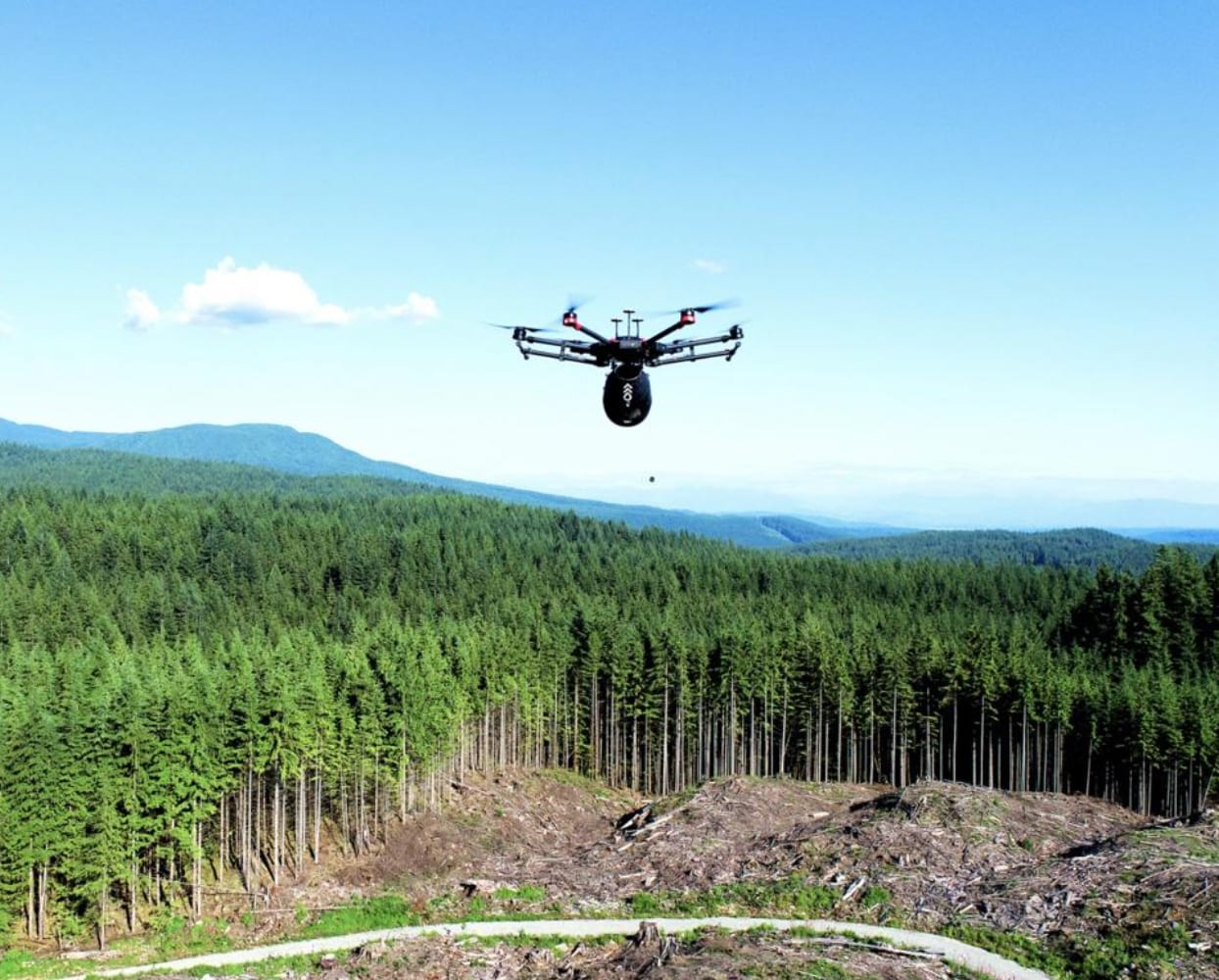 The drones from the Canadian company, Flash Forest can plant trees 10 times faster than humans. The company uses the latest drone technology in combin